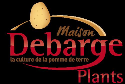 Homemade potato debarge plants